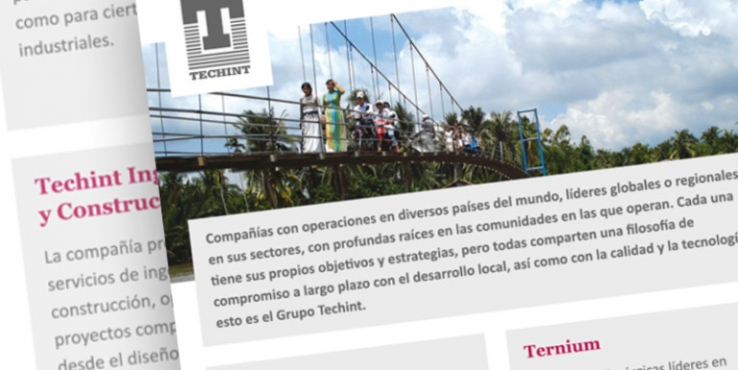 techint-grilla